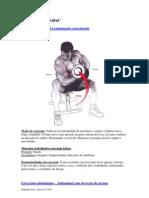 Aumento Muscular