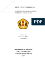 PTPN VIII Cikumpay