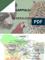 Animales Peruano en Peligro de Extincion