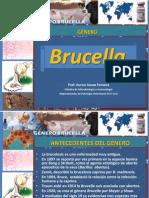 8 BRUCELLA