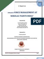 Sales Force Management Pdf