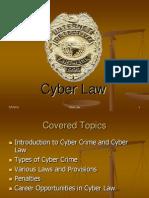 0e8aCyber Law2