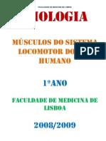 Miologia_Resumostamaria