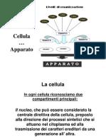 La Cellula App-1