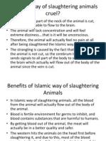 Is Islamic Way of Slaughtering Animals Cruel