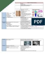 Metabolic and Endocrine Disorder of Bone