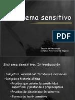 Sistema sensitivo