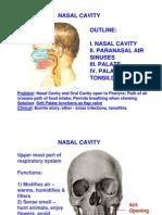 Nasal Cavity Lectureff
