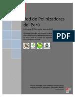 Informe 1 Red Polinizadores Del Peru