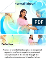Introduction to Normal Labour