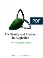 Augustine an Ecological Analysis