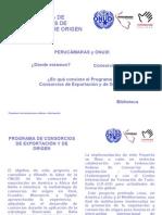 Asociatividad ONUDI Perucamaras Redes y Consorcios