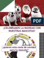 perri_navidad_2011