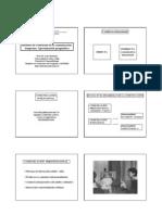 3_ desarrollo_pragmatico