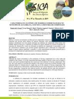 CARACTERIZAÇÃO ANATÔMICA DE MADEIRAS COMERCIALIZADAS NO MUNICÍPIO DE ALTAMIRA - PA, COM VISTA A INDUSTRIA DE COMPENSADO