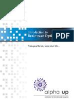 Introduction to Brainwave Optimization