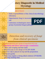 Laboratory Diagnostic in Medical Mycology