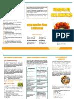 Folheto+-+Alimenta%C3%A7%C3%A3o