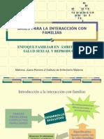 Bases Para La Intervencic3b3n Con Familias2010