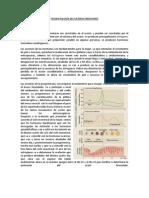 9 Clase IX Patología del Sistema Endocrino