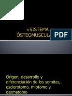 SISTEMA ÓSTEOMUSCULAR=