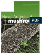 Novel Antimicrobials From Mushrooms by Paul Stamets