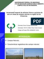 Apresentação parcial PIBIC  2011-2012 2