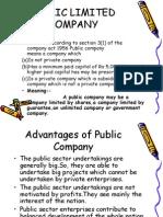 Advantages and Disadvantages of Public Company