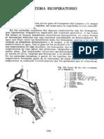 Anatomia Humana Tomo2 Archivo2