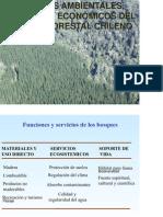 Impactos del Modelo Forestal chileno