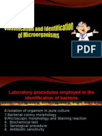 Classification & Identification