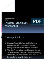PMN3023 Strategic Management