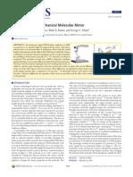 Martin McCullagh et al- DNA-Based Optomechanical Molecular Motor