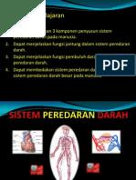 Sistem Peredaran Darah Ppt
