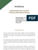 Dr. Duberly RODRIGUEZ VSCJP Prin.gar.NCPP Del Peru Cuzco