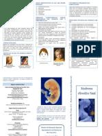Sindrome Alcoólica Fetal - Dezembro 2011