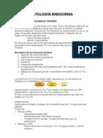 Apuntes PQI - Endocrino Vascular, Torácico