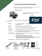 Funcionamento Dos Motores Termodinamicos[1]