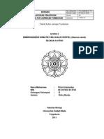 laporan embriogenesis
