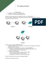 TP 1-Réseaux et protcole