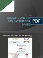 Isolasi, Pemurnian Karakterisasi Protein-6 (20 Desember 2011)