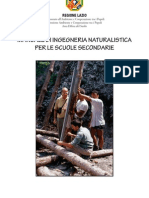 Manuale Ingegneria Naturalistic A I