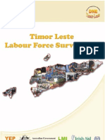 Timor-Leste -Labour Force Survey Report - 2010