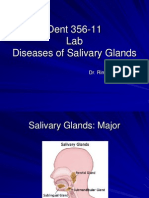 Lab 7 Diseases of Salivary Glands