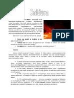 New Document Microsoft Office Word