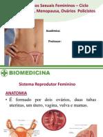 Apresentação de hormonios femininos 02
