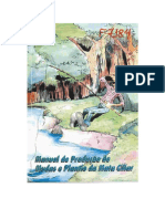 Manual-producao Mudas 1998