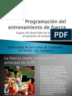 Etapas de desarrollo de la fuerza para programas de preparación física