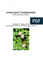 Bioenergetic Fundamentals