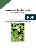 Bioenergetic Fundamentals